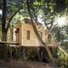 Luxury Treehouse Boasts Hot Tub, Sauna and Fireplace