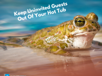 Keep Uninvited Guests Out Of Your Hot Tub