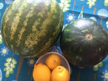 watermelon mint hot tub drink