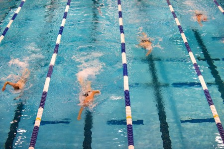 swimming-659903_1920